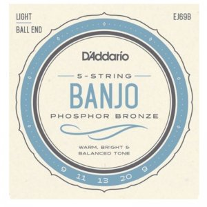 D'Addario EJ69B, Phos Bronze, (Light) 5 String Banjo Set, Ball End