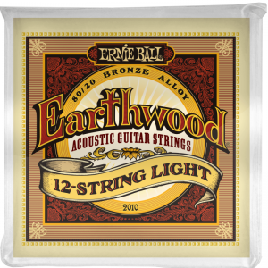 Ernie Ball Earthwood 12 String Light 2010