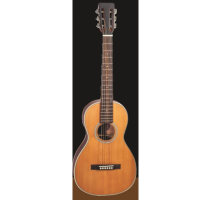 Woodstock WHW38303 Solid Top Parlour Guitar
