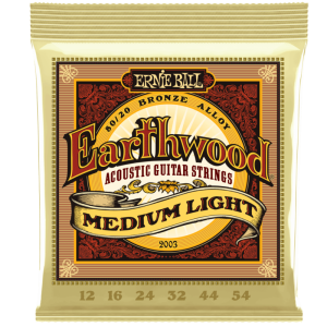 Ernie Ball,  Earthwood 2003 80/20 Bronze Acoustic Guitar Strings, Medium Light 12's