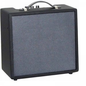 Ashbury 10 Watt Combo Amplifier (GR81041)