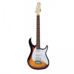 Peavey Raptor Plus Sunburst Electric Guitar